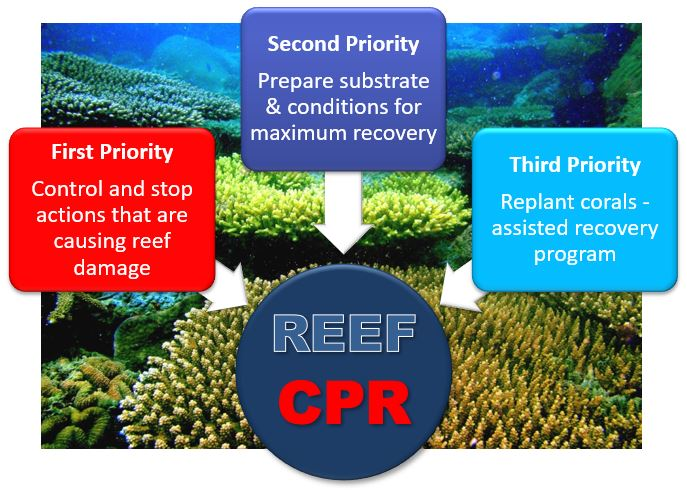 Reef_CPR_Priority_graphic_new