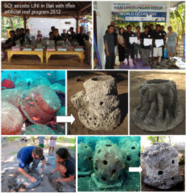 SOI_BALI_collage_of_units_and_competition_web_size